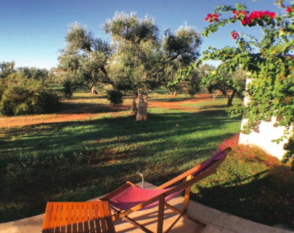 Trau Dich | Business-Reise nach Apulien